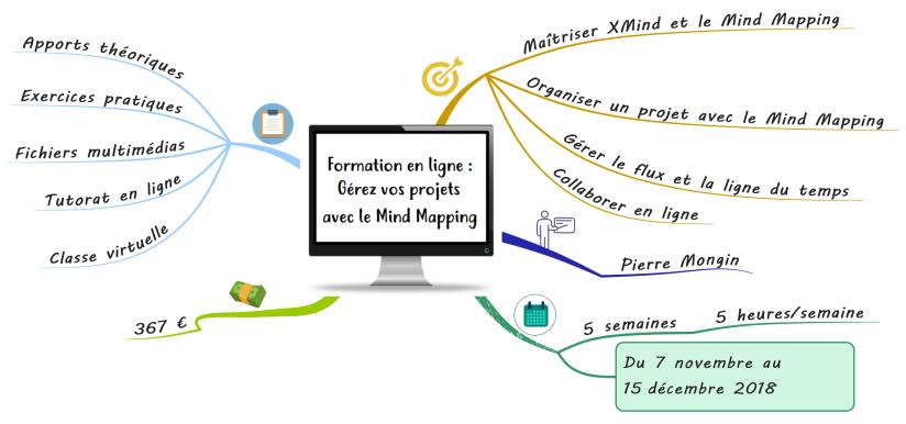 Formation mind mapping en ligne pro.png
